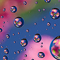 Raindrops And Flowers 7 by John Brueske