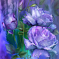 Raindrops On Lavender Roses by Carol Cavalaris