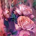 Raindrops On Peach Roses by Carol Cavalaris