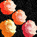 Raindrops On Roses - My Favorite Things by Andee Design