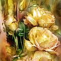 Raindrops On Yellow Roses by Carol Cavalaris