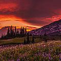 Rainier Fire Mountain Panorama by Mike Reid