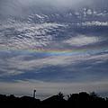 Rainless Rainbow by Dan McCafferty