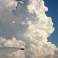 Rainmaker by Ann Horn