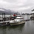 Rainy Day Dock by Cathy Mahnke