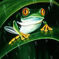 Rainy Day Frog by Kathy Barrett