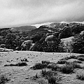 Rainy Day In The Lake District Near Loughrigg Cumbria England Uk by Joe Fox