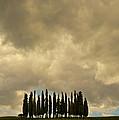 Rainy Day In Toskany by Jaroslaw Blaminsky
