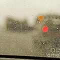 Rainy Day Perspective by MaryJane Armstrong