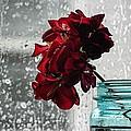 Rainy Day by Tammy Lee Bradley
