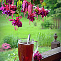 Rainy Day Tea by Lila Fisher-Wenzel