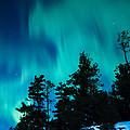 Rainy Lake Lights by Lori Dobbs