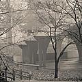 Rainy Morning by Trish Tritz