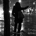 Rainy Night - Hailing A Cab by Miriam Danar
