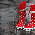 Rainy Season In Germany by Tanja Riedel