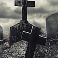 Raising The Dead by Margie Hurwich