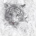 Rajah by Joelle Bhullar