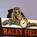 Raley Field by Paul Guyer