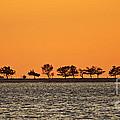 Ram Island by Joe Geraci
