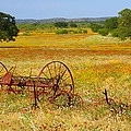 Ranch And Wildflowers And Old Implement 2am-110547 by Andrew McInnes