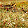 Ranch And Wildflowers And Old Implement 2am-110546 by Andrew McInnes