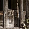 Ranch Cabin Old Door In Antique Color 3007.02 by M K Miller