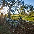 Ranch Fence by Sean Wray