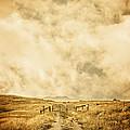 Ranch Gate by Edward Fielding