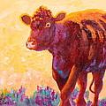 Ranch Hand by Nancy Jolley