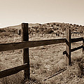Ranch 2 by Steve Wile
