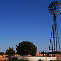 Ranch Windmill by Pam Romjue