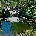 Rancheria Falls-yt by Ruth Hager