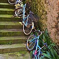 Range Of Bikes by Dany Lison