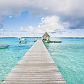 Rangiroa Atoll Pier On The Ocean by M Swiet Productions