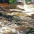 Rapids Of The Swift River Kancamagus Hwy View White Mountains Nh by Lizi Beard-Ward