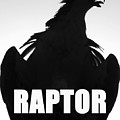 Raptor Spc Work A by David Lee Thompson