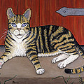 Rascal The Cat by Linda Mears