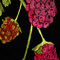 Raspberry Fabric by Paula Ayers