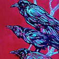 Raven by Derrick Higgins