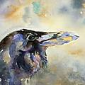 Raven I by Pat Butera