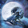 Raven Moon by Carol Cavalaris