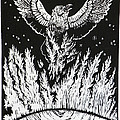 Raven Stealing Fire From The Sun - Woodcut Illustration For Corvidae by Dawn Senior-Trask