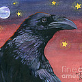 Raven Steals The Moon - Moon What Moon? by J W Baker