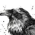 Raven Watercolor Portrait by Olga Shvartsur