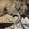 Ravenlight Tree by Stefan Duncan