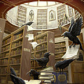 Ravens In The Library by Rob Carlos