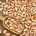 Raw Cacao Beans by Marek Uliasz