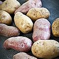 Raw Potatoes by Elena Elisseeva