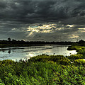 Lake Worth Sunlight by Jonathan Davison