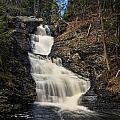 Raymondskill Falls by Dave Sandt